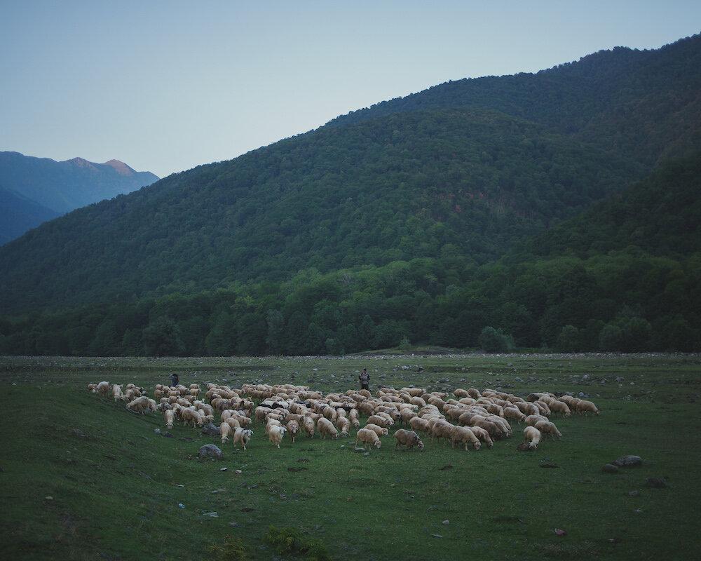 The Pankisi Valley in eastern Georgia.